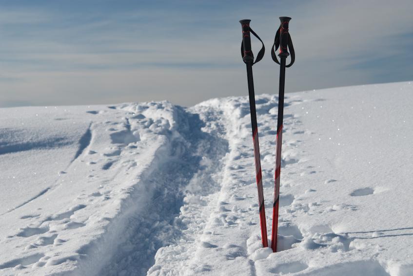 материал лыжных палок
