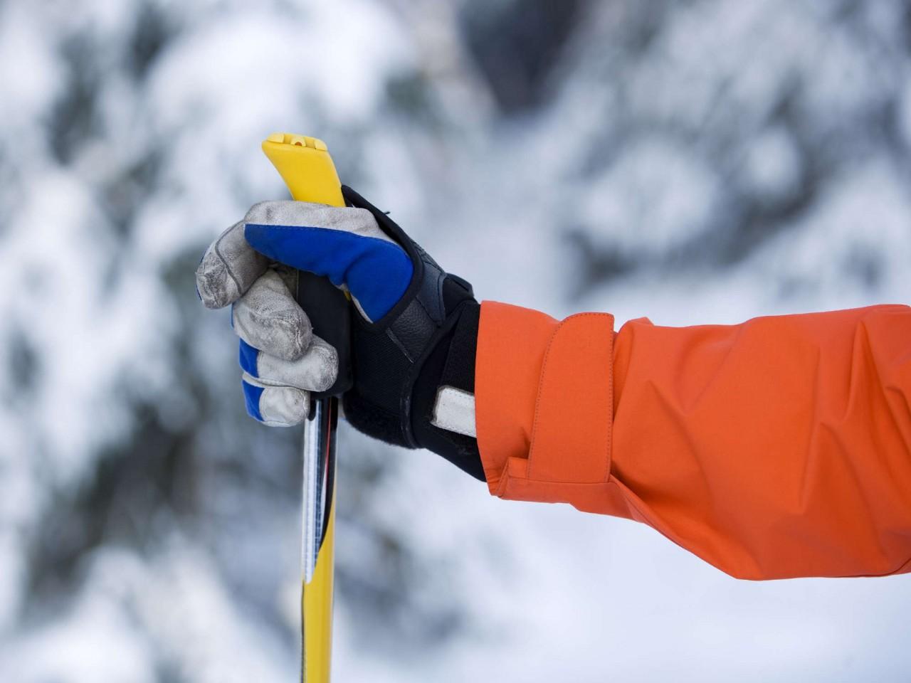 длина лыжных палок