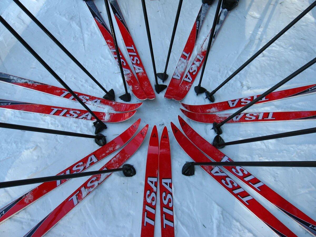 универсальные беговые лыжи