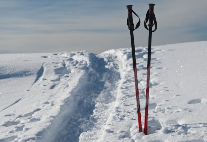 Как правильно подобрать лыжные палки по росту и материалу изготовления